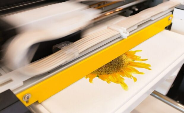 Digital Printing Machine Printing a Sunflower